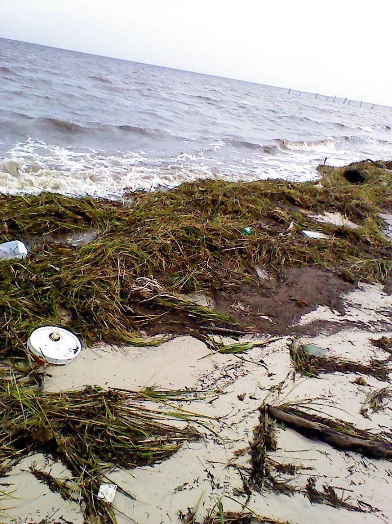 Debris beach